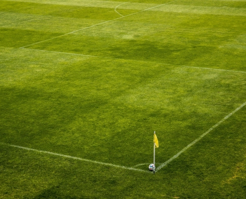 white and black soccer ball on side of green grass field 47343